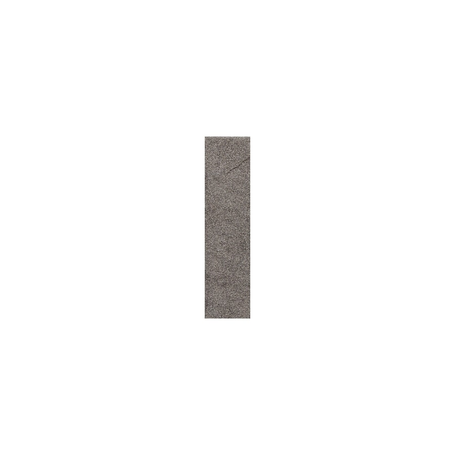 American Olean Shadow Bay Rocky Shore Thru Body Porcelain Bullnose Tile (Common: 1-in x 6-in; Actual: 1-in x 6-in)