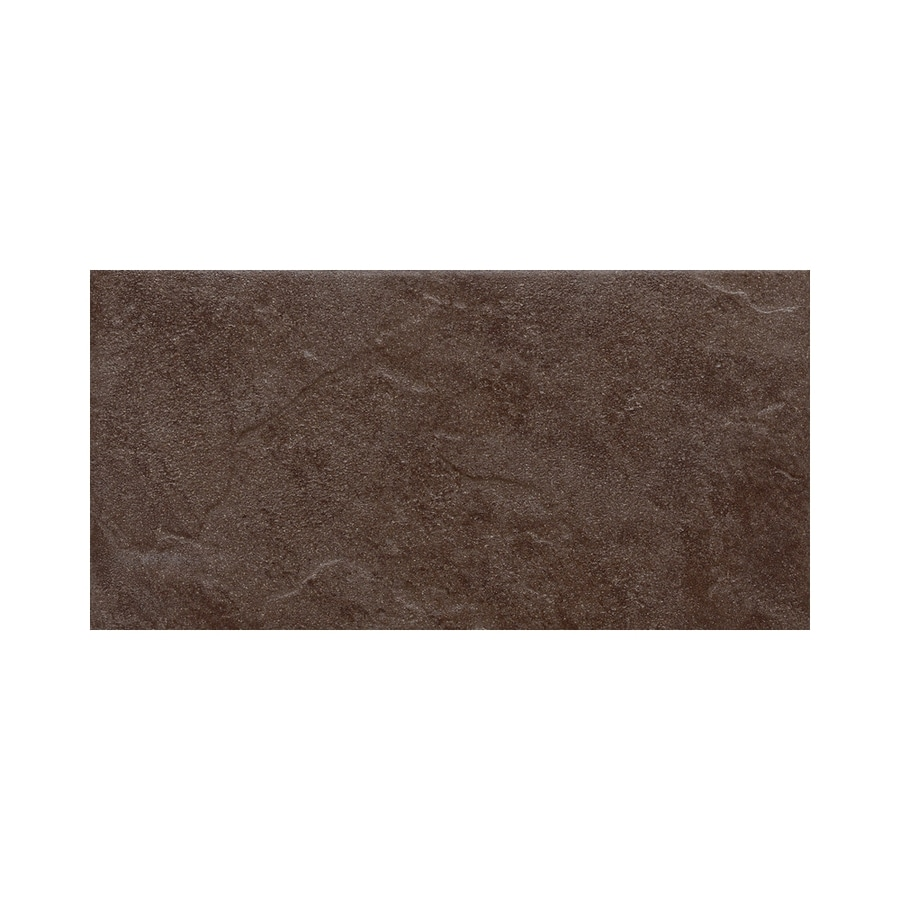 American Olean Shadow Bay Fishing Pier Thru Body Porcelain Bullnose Tile (Common: 8-in x 10-in; Actual: 6-in x 12-in)
