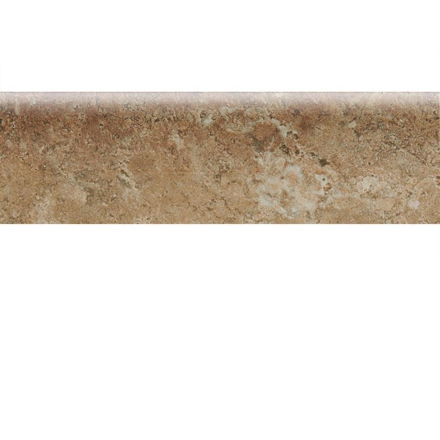 Shop american olean bordeaux marron ceramic bullnose tile for 10 x 10 ceramic floor tile