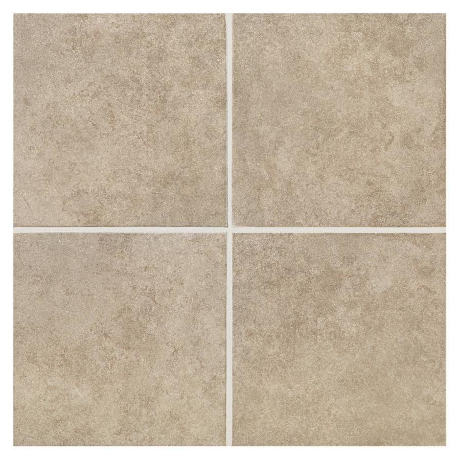 American Olean Castlegate 8-Pack Gray Porcelain Floor and Wall Tile (Common: 18-in x 18-in; Actual: 17.75-in x 17.75-in)