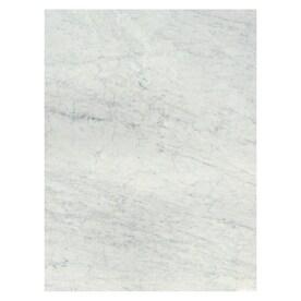 American Olean Mooreland Carrara White 9 In X 12 In