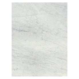 American Olean Mooreland Carrara White Ceramic Wall Tile Common 9 In X 12