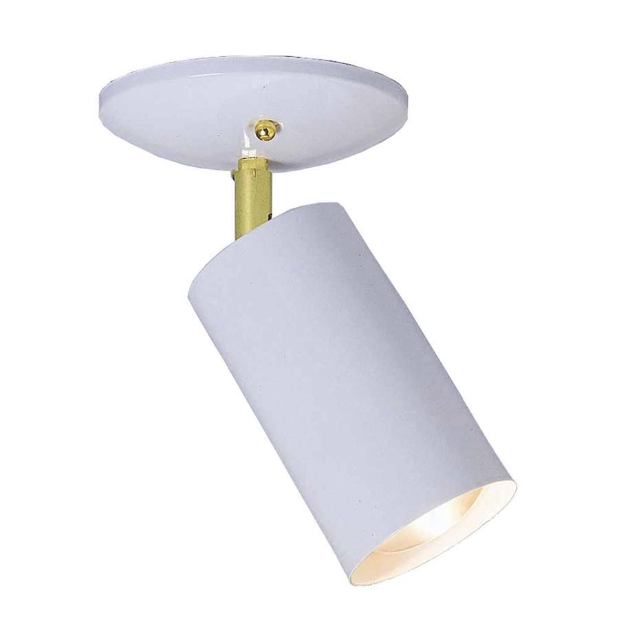 Poway 60-Watt (60 W Equivalent) White  Incandescent Spot Light