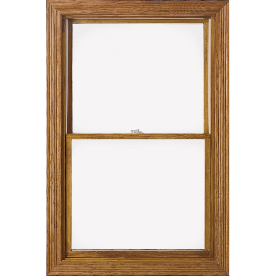 Shop pella 37x57 250 series double hung wood clad clear for Pella window screens