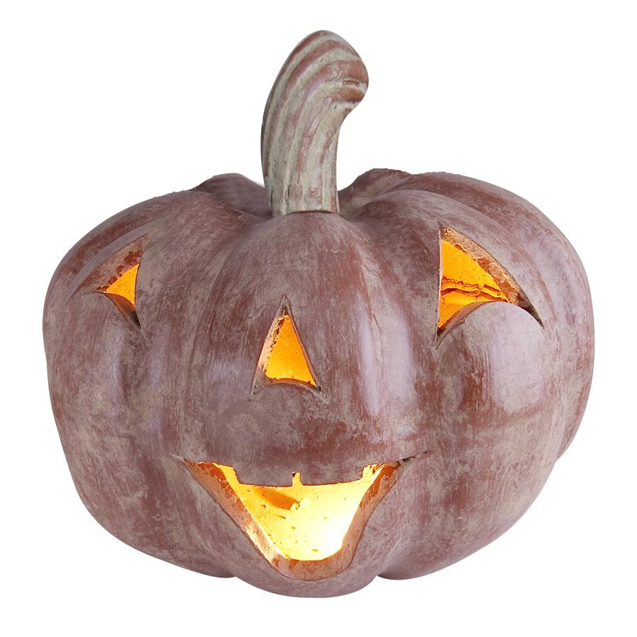 Short Giant Pumpkin
