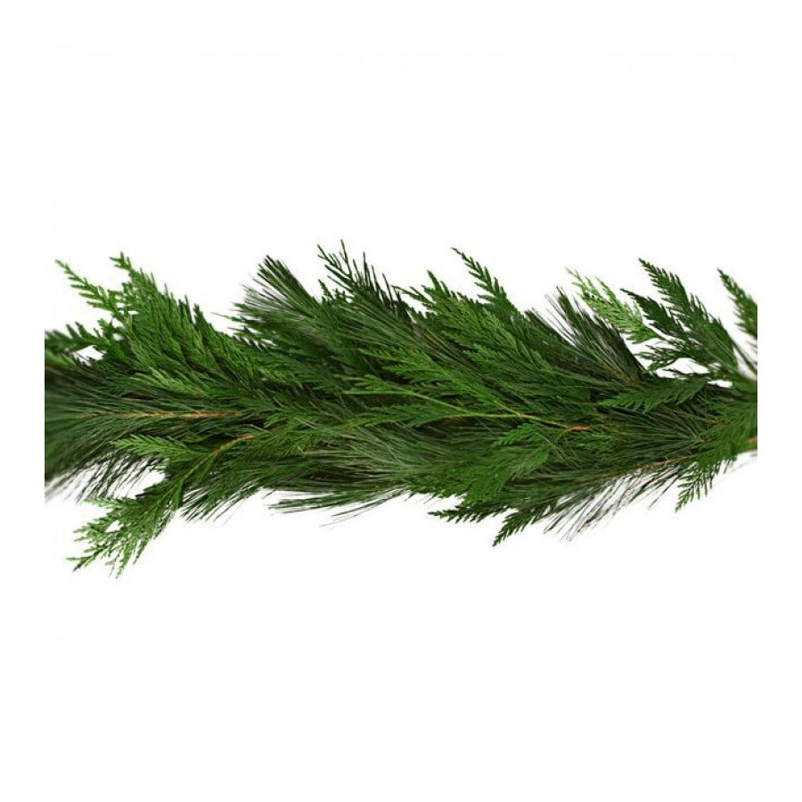 Shop 20 Ft Fresh White Pine Christmas Garland At Lowes Com