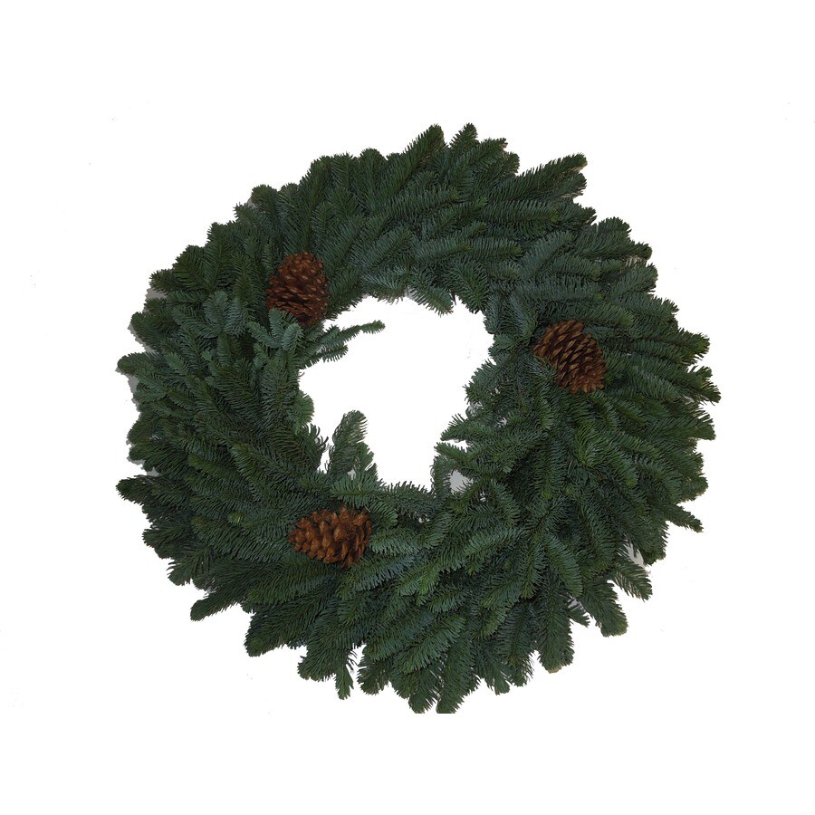 28-in Fresh Noble Fir Christmas Wreath with Lights