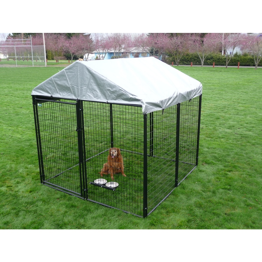 10-ft x 10-ft x 6-ft Outdoor Dog Kennel Preassembled Kit