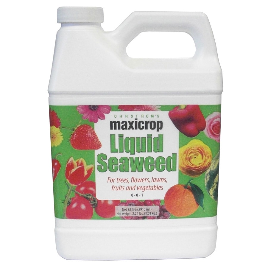Maxicrop Seaweed 32-fl oz Organic/Natural Flower and Vegetable Food (0-0-1)