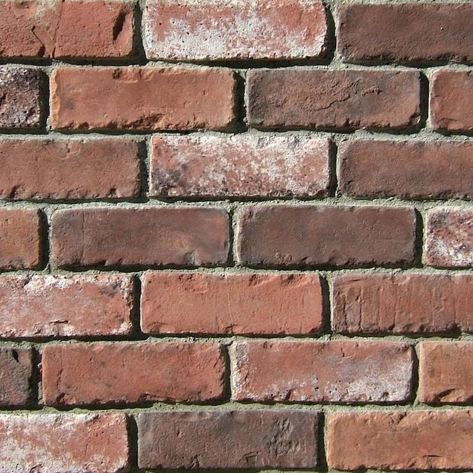 Coronado Stone Products 2 5 In X 8 In Special Use Rustic Blend Individual Piece Brick Veneer In The Brick Veneer Department At Lowes Com