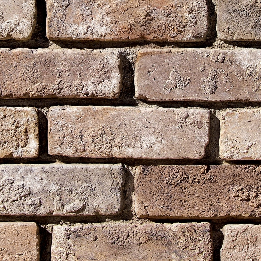 Coronado Stone Products Special Used Brick 2.5-in x 8-in Eagle Buff Individual Piece Brick Veneer