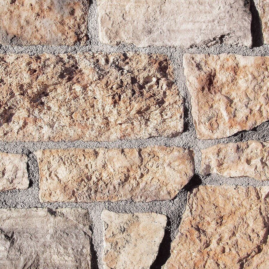 Coronado Stone Products Cut Stone 15-sq ft Ancient Reef Faux Stone Veneer