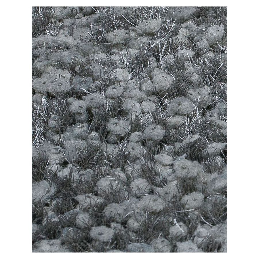 KAS Rugs Classy Shag Silver Rectangular Indoor Shag Area Rug (Common: 8 x 10; Actual: 96-in W x 120-in L)
