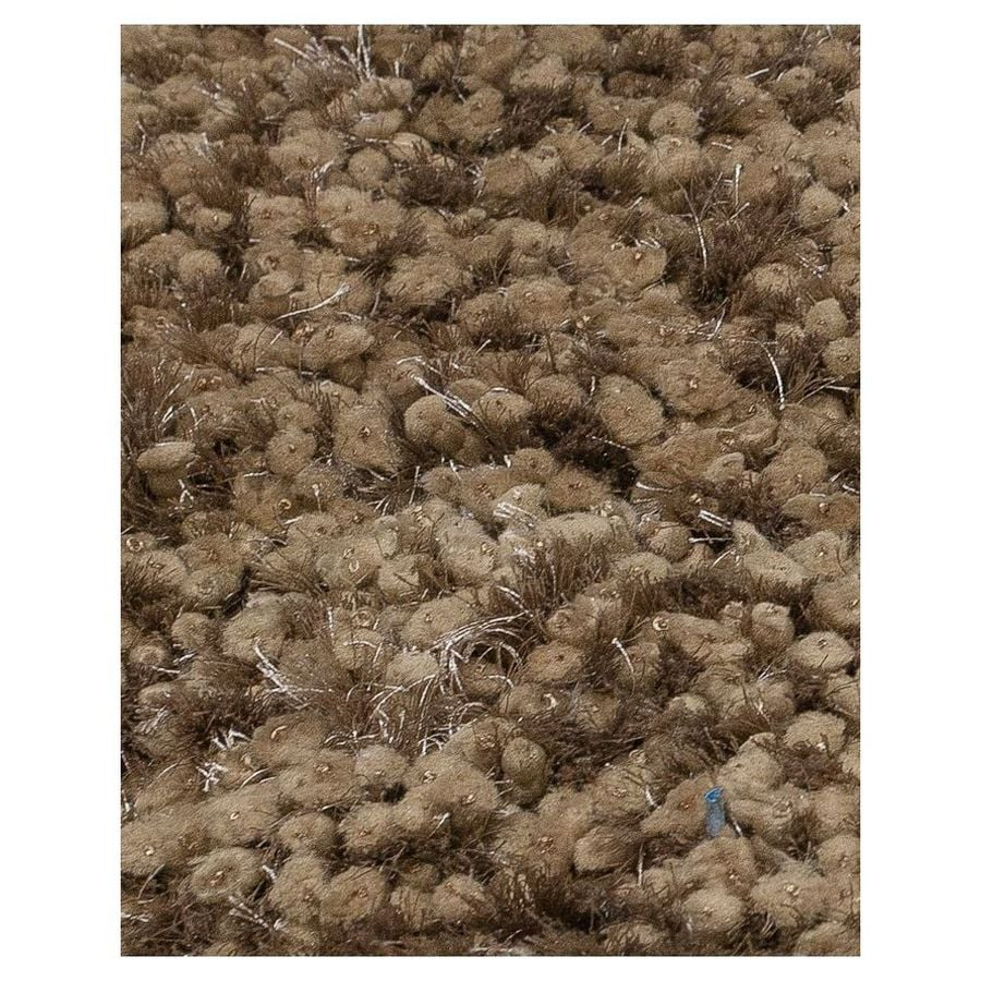 KAS Rugs Classy Shag Brown Rectangular Indoor Shag Area Rug (Common: 7 x 9; Actual: 78-in W x 114-in L)