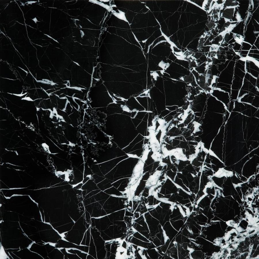 Emser 11.81-in x 11.81-in Black/White Polished Natural Marble Floor Tile