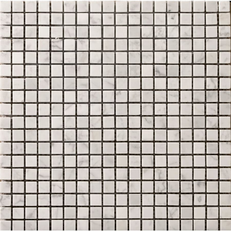 Emser Bianco Gioia Nantes Marble Border Tile (Common: 12-in x 12-in; Actual: 12.01-in x 12.01-in)