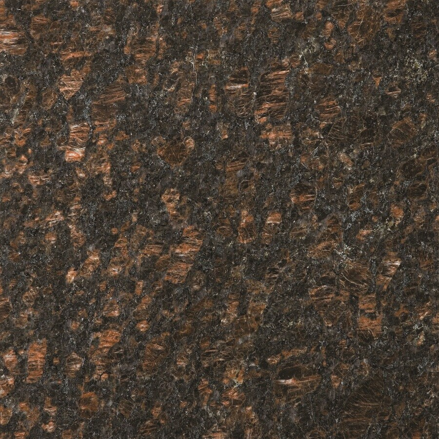 Shop emser 10 pack tan brown granite floor and wall tile common emser 10 pack tan brown granite floor and wall tile common 12 dailygadgetfo Images