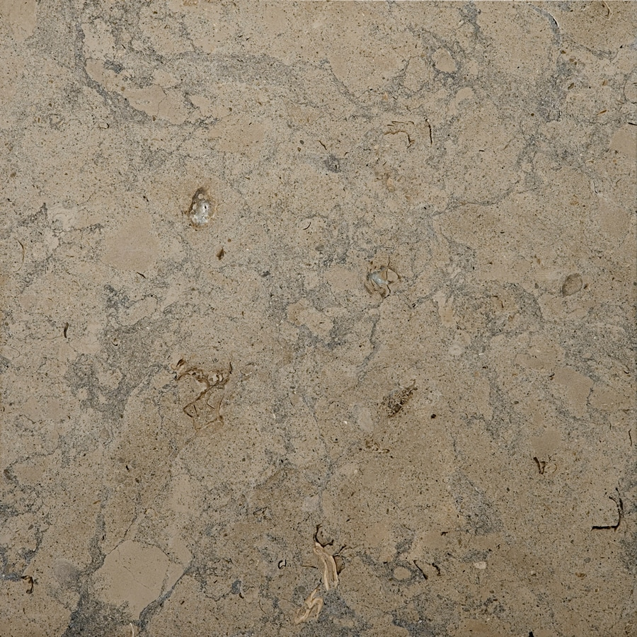 Emser Lagos Azul Limestone Floor and Wall Tile (Common: 18-in x 18-in; Actual: 18-in x 18-in)