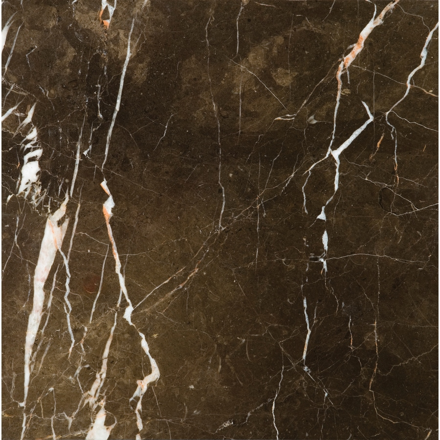 Shop Emser 5 Pack St Croix Brown Marble Floor And Wall