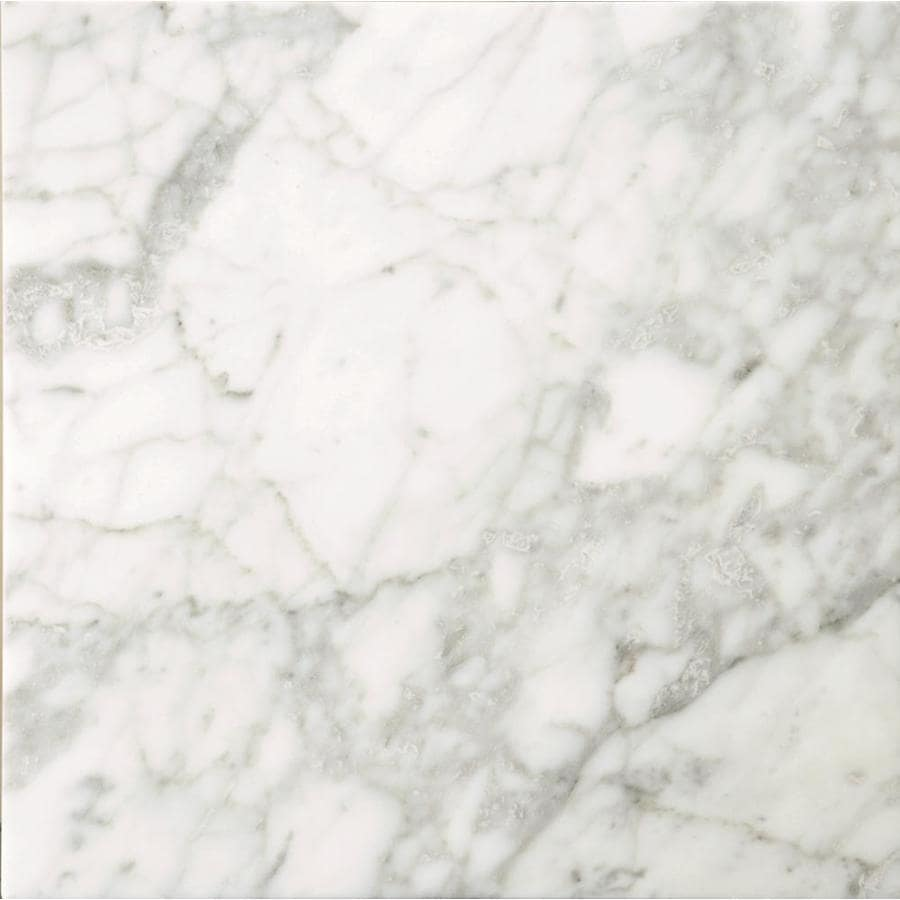 Shop Emser Bianco Gioia Marble Floor and Wall Tile (Common: 18-in x ...