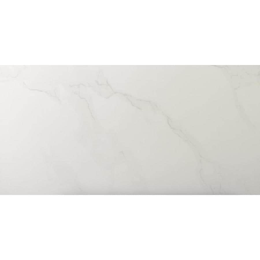 Emser Paladino 8-Pack Albanella Porcelain Floor and Wall Tile (Common: 12-in x 24-in; Actual: 11.81-in x 23.62-in)