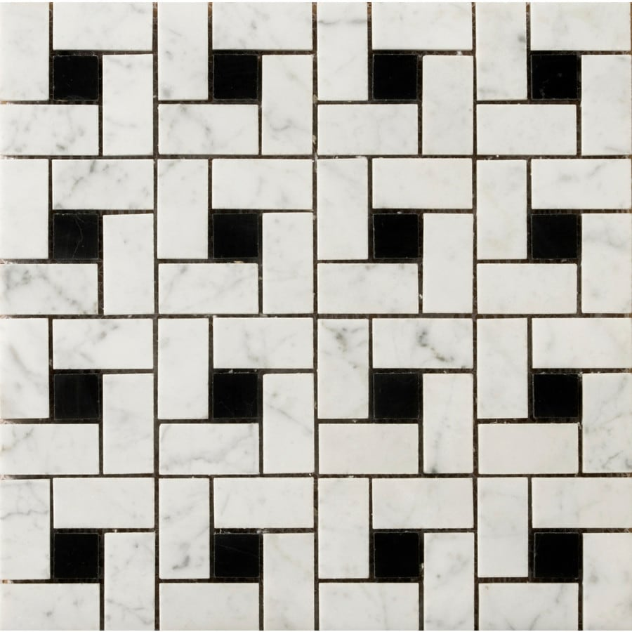 Emser Bianco Gioia Black Marble Border Tile (Common: 12-in x 12-in; Actual: 12-in x 12-in)