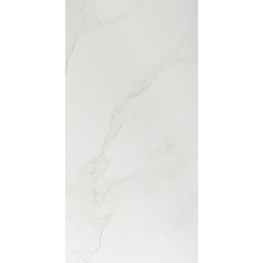 Emser Paladino 8-Pack Albanella Porcelain Floor and Wall Tile (Common: 12-in x 24-in; Actual: 11.79-in x 23.79-in)