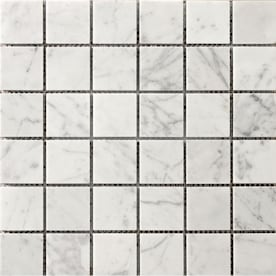 Emser Chronicle Record Porcelain Border Tile 12 In X 12 In In The Accent Trim Tile Department At Lowes Com