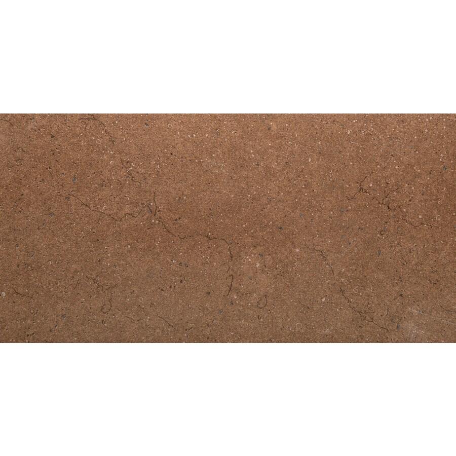 Emser Rio Grande 8-Pack Flow Porcelain Floor Tile (Common: 12-in x 24-in; Actual: 11.8-in x 23.7-in)