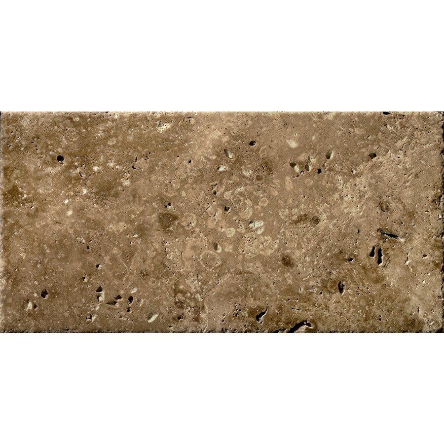 Shop emser umbria bruno travertine floor and wall tile common 16 emser umbria bruno travertine floor and wall tile common 16 in x 24 dailygadgetfo Choice Image