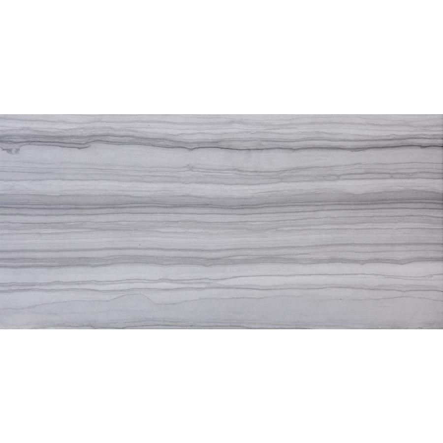 Emser CHRONICLE 2-Pack Record Porcelain Floor and Wall Tile (Common: 18-in x 36-in; Actual: 17.4-in x 35.04-in)