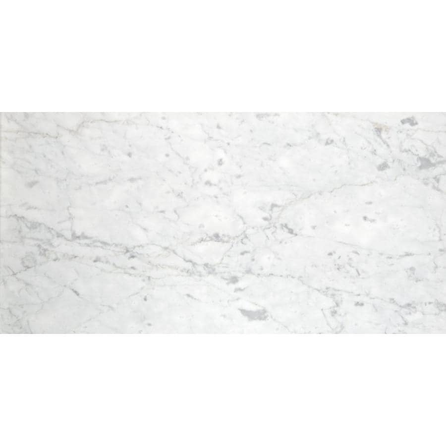 Emser BIANCO GIOIA 3-Pack Bianco Gioia Nantes Marble Floor and Wall Tile (Common: 16-in x 32-in; Actual: 32-in x 16-in)