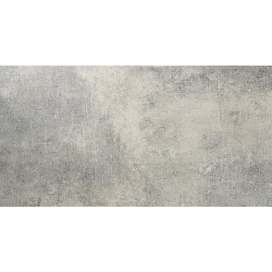 Emser CHIADO 8-Pack Jerome Porcelain Floor and Wall Tile (Common: 12-in x 24-in; Actual: 11.81-in x 23.62-in)