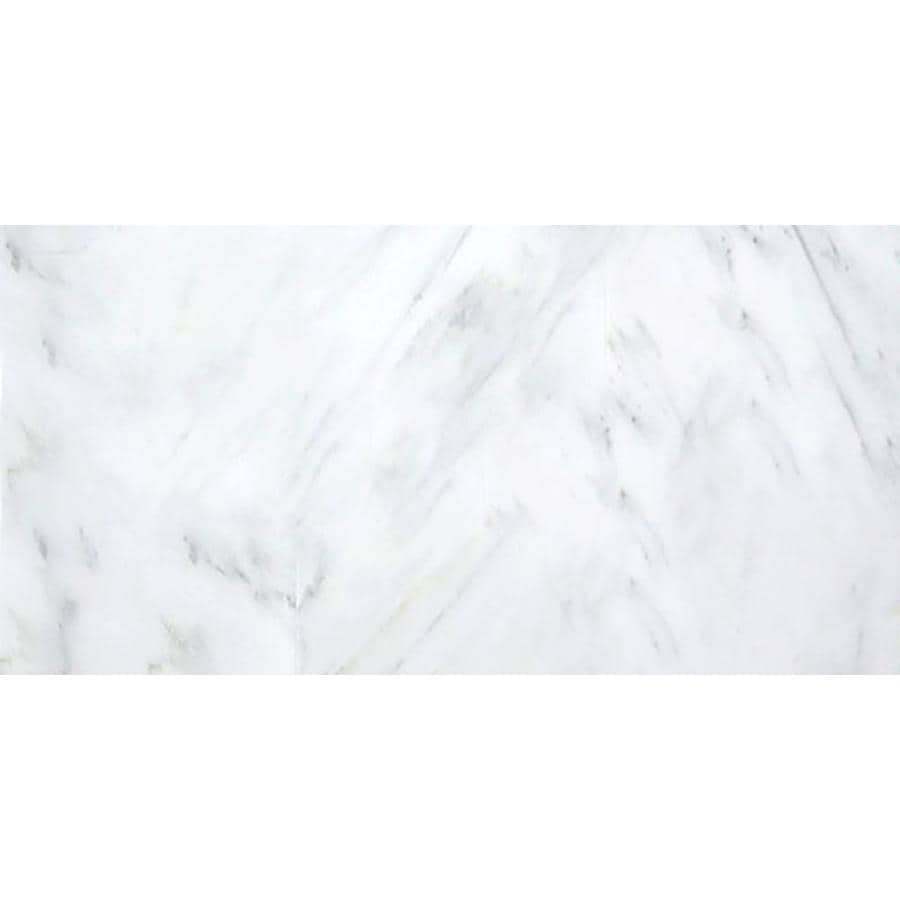 Emser WINTER FROST 6-Pack Marble Floor and Wall Tile (Common: 12-in x 24-in; Actual: 12.01-in x 24.02-in)