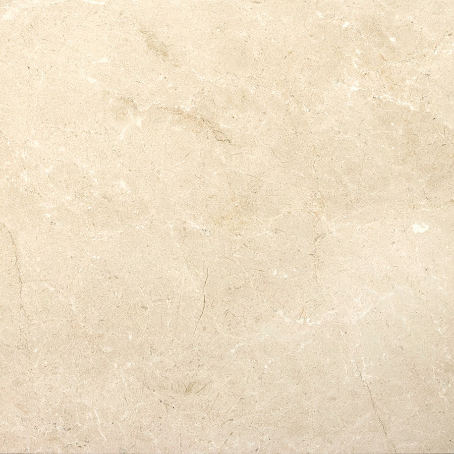 Emser MARBLE Crema Marfil Plus  Floor and Wall Tile (Common: 24-in x 24-in; Actual: 24-in x 24-in)