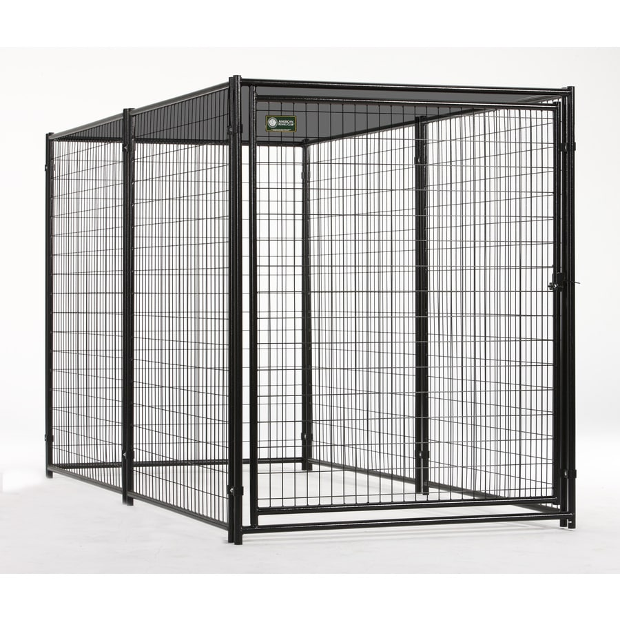Shop AKC 5x10 Probreeder Welded Wire Kennel with Cover at Lowes.com