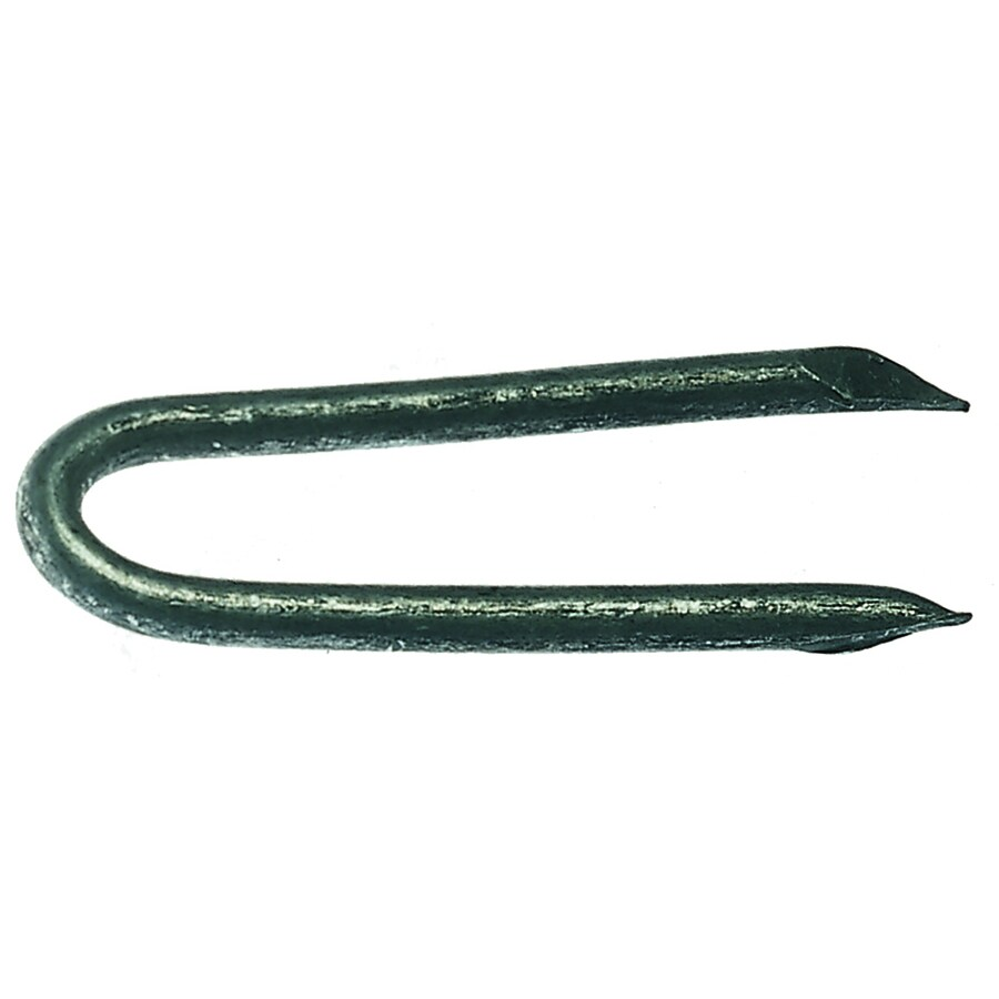 Grip-Rite 50-lb 1.5-in Standard Staples