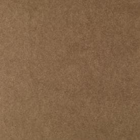 ... 47.75-in x 7.98-ft Smooth Brown Tempered Hardboard Wall Panel