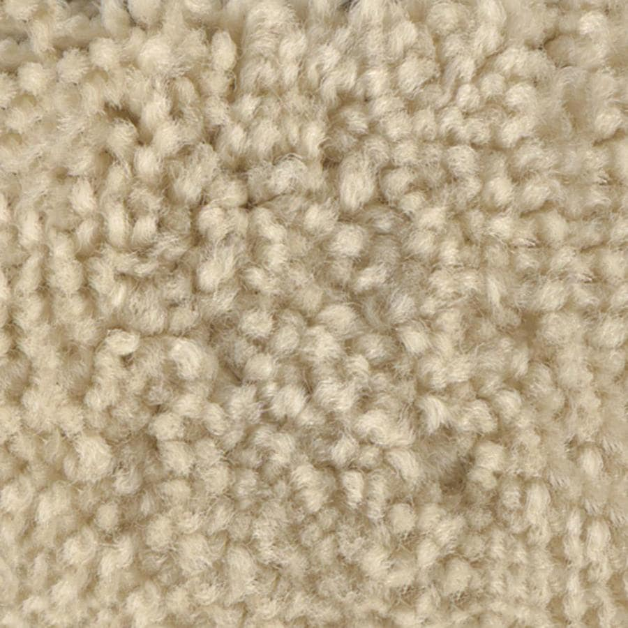 STAINMASTER PetProtect Baxter II 12-ft W x Cut-to-Length Lucy Textured Interior Carpet