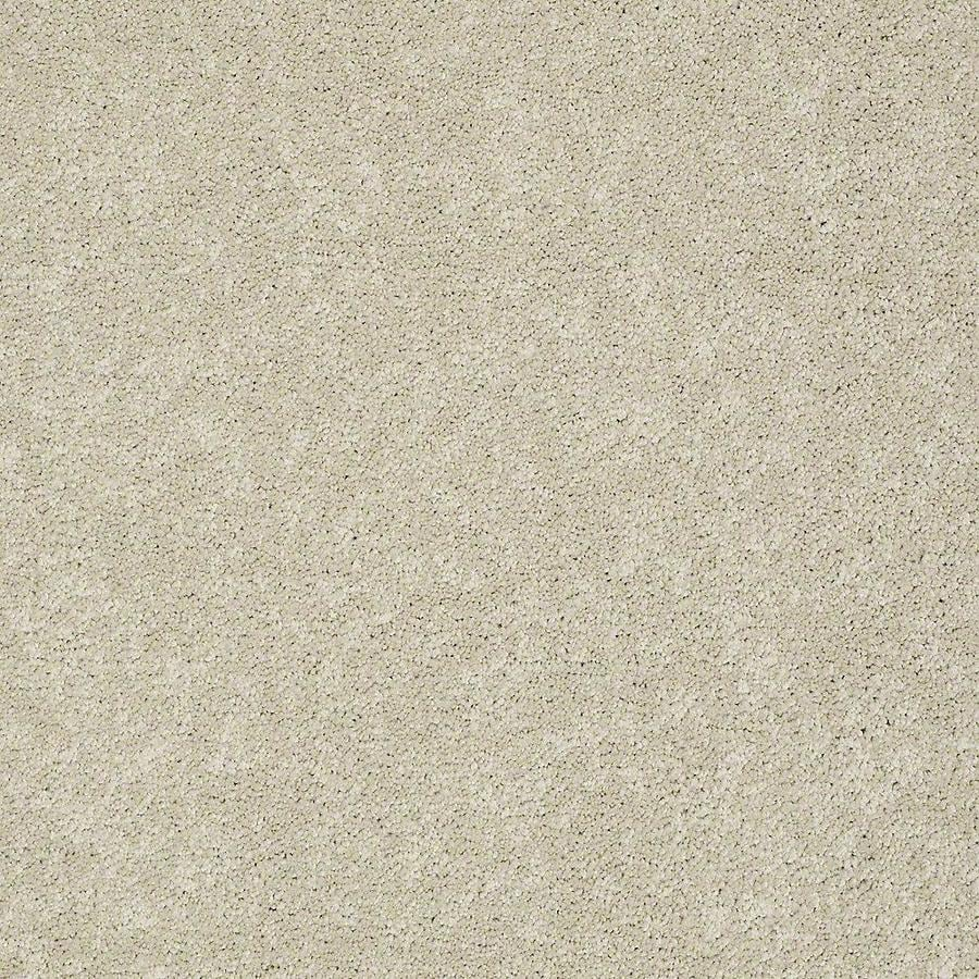 STAINMASTER PetProtect Baxter II 12-ft W x Cut-to-Length Sadie Textured Interior Carpet