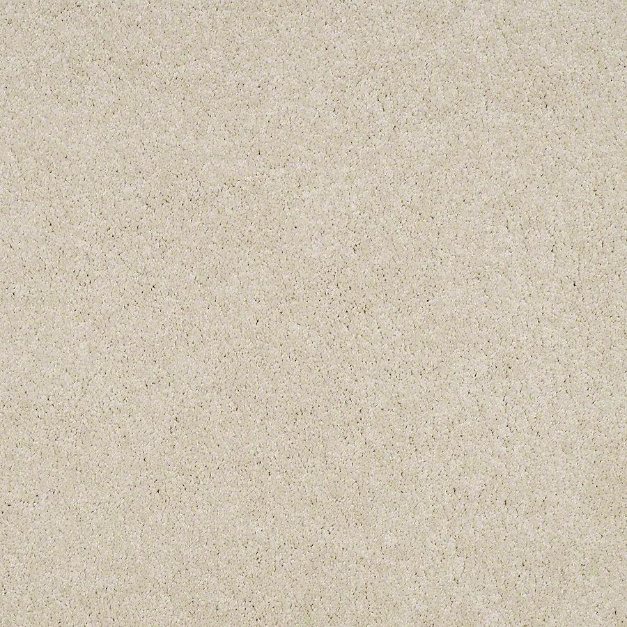 STAINMASTER PetProtect Baxter II 12-ft W Pug Textured Interior Carpet