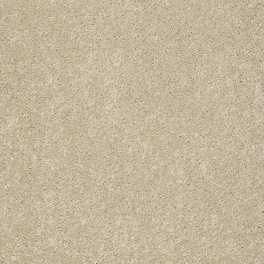 STAINMASTER PetProtect Baxter II 12-ft W x Cut-to-Length Charlie Textured Interior Carpet