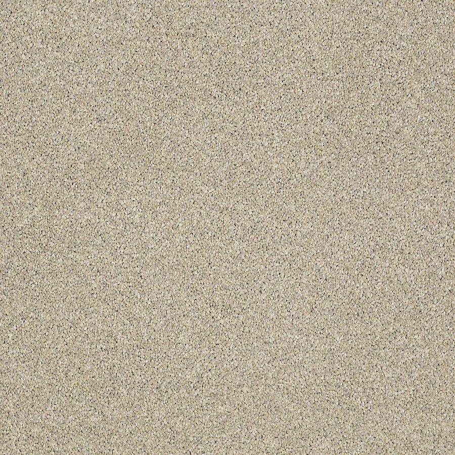 STAINMASTER PetProtect Baxter II 12-ft W x Cut-to-Length Izzy Textured Interior Carpet