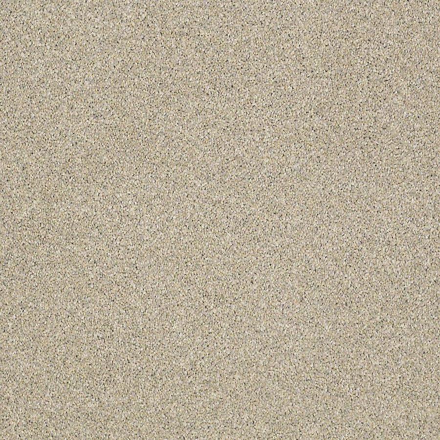 STAINMASTER PetProtect Baxter II Izzy Textured Indoor Carpet