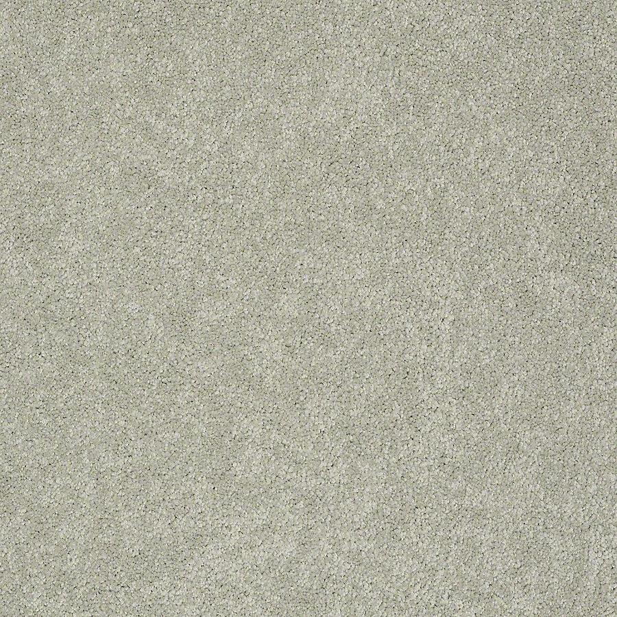 STAINMASTER PetProtect Baxter II 12-ft W Buster Textured Interior Carpet