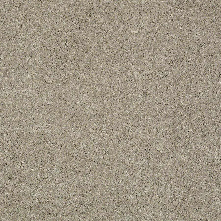 STAINMASTER PetProtect Baxter II Oliver Textured Indoor Carpet