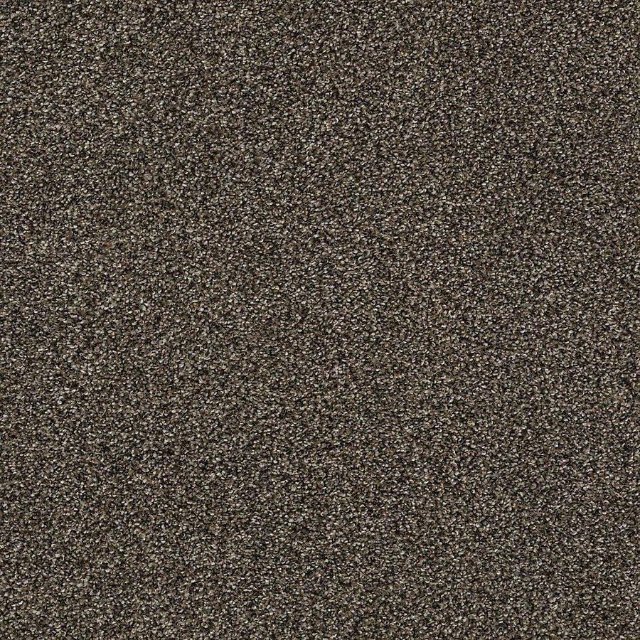 STAINMASTER PetProtect Baxter II Sasha Textured Indoor Carpet