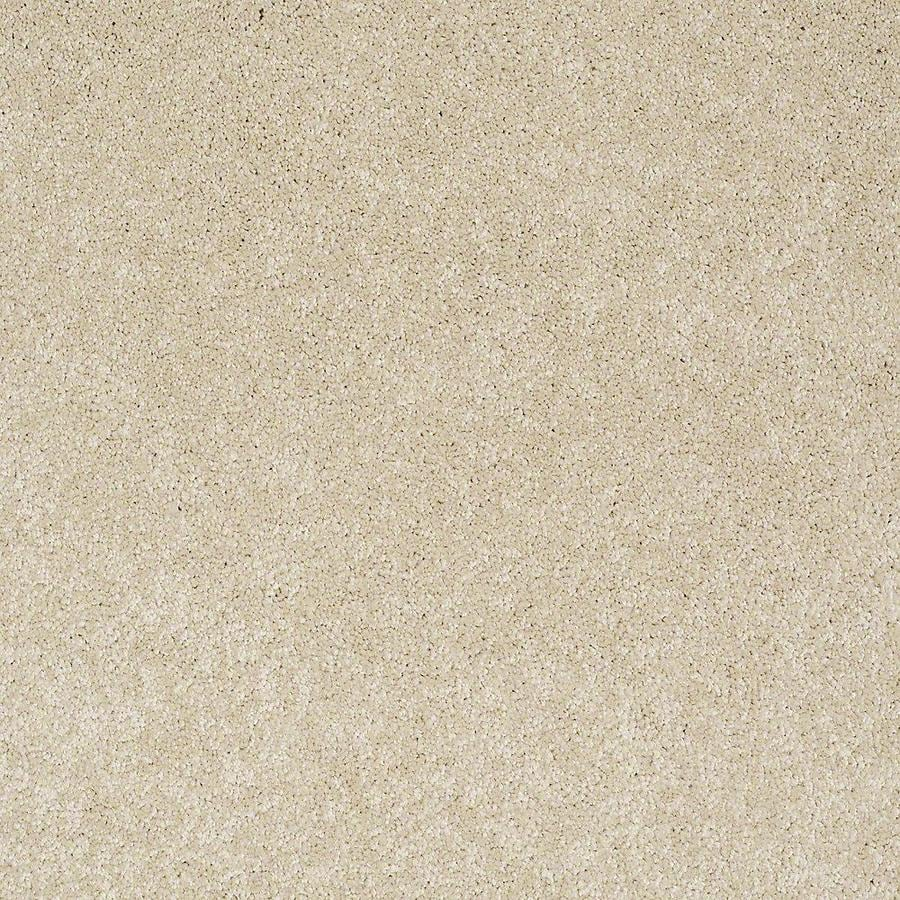 STAINMASTER PetProtect Baxter III 12-ft W x Cut-to-Length Rudy Textured Interior Carpet