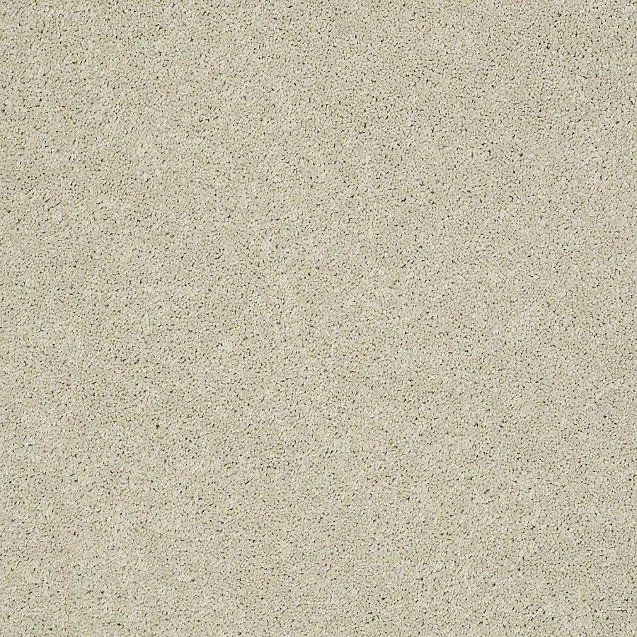 STAINMASTER PetProtect Baxter III 12-ft W x Cut-to-Length Sadie Textured Interior Carpet