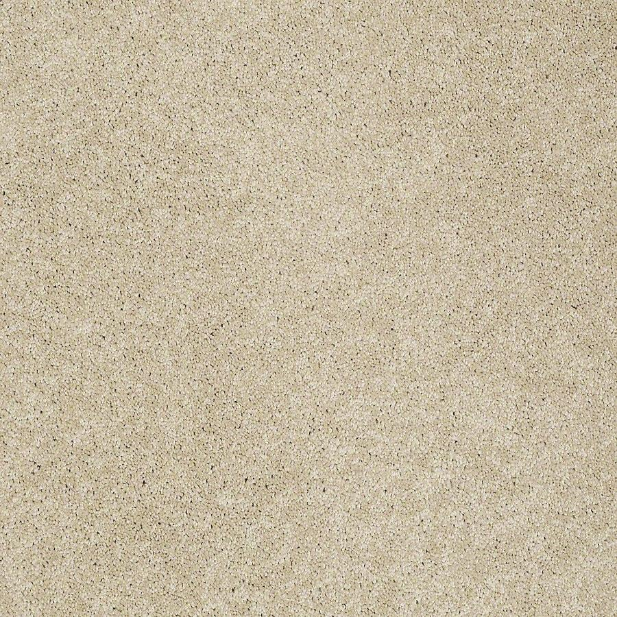 STAINMASTER PetProtect Baxter III Charlie Textured Indoor Carpet